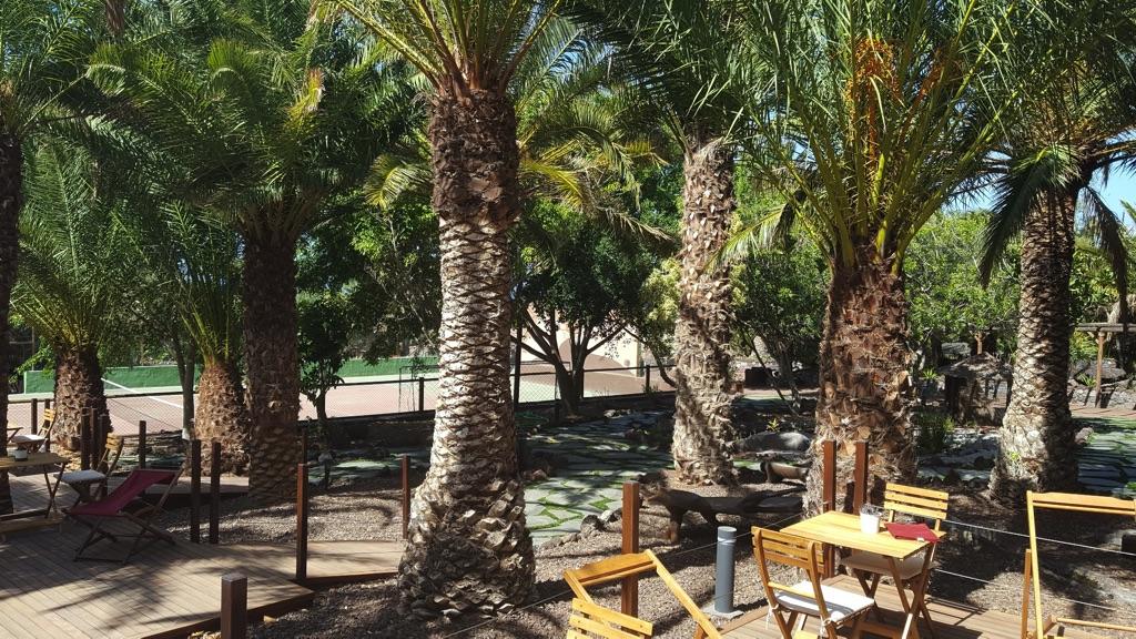 Guayedra lodges villas fincas y casas rurales selectas - Redondo de guayedra ...